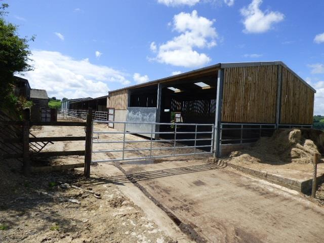 LOOSE HOUSING CATTLE SHED